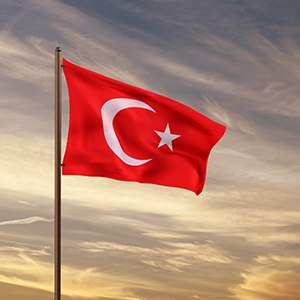 「トルコ関連」がランキング入り、通貨リラ急落で警戒感高まる<注目テーマ>