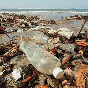 「脱プラスチック」が5位に急浮上、環境相のレジ袋有料化法整備発言で関心急速に高まる<注目テーマ>