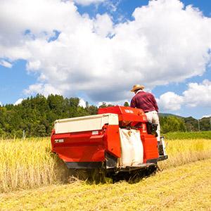 「農業関連」が10位にランク、FAOなどの共同声明で世界的食料危機を意識<注目テーマ>